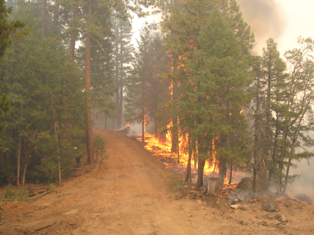 wildfire risk analysis services